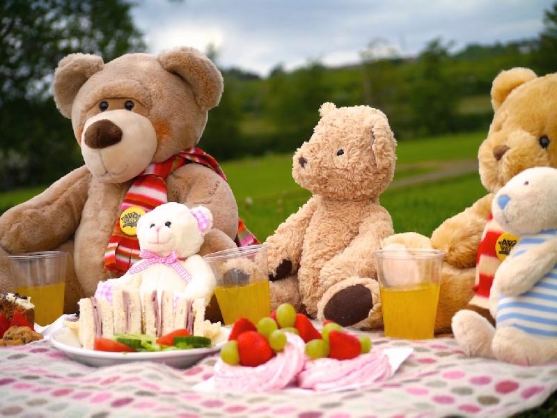 Messy Play Teddy Bear S Picnic Fun 11am Session 23rd May 2018