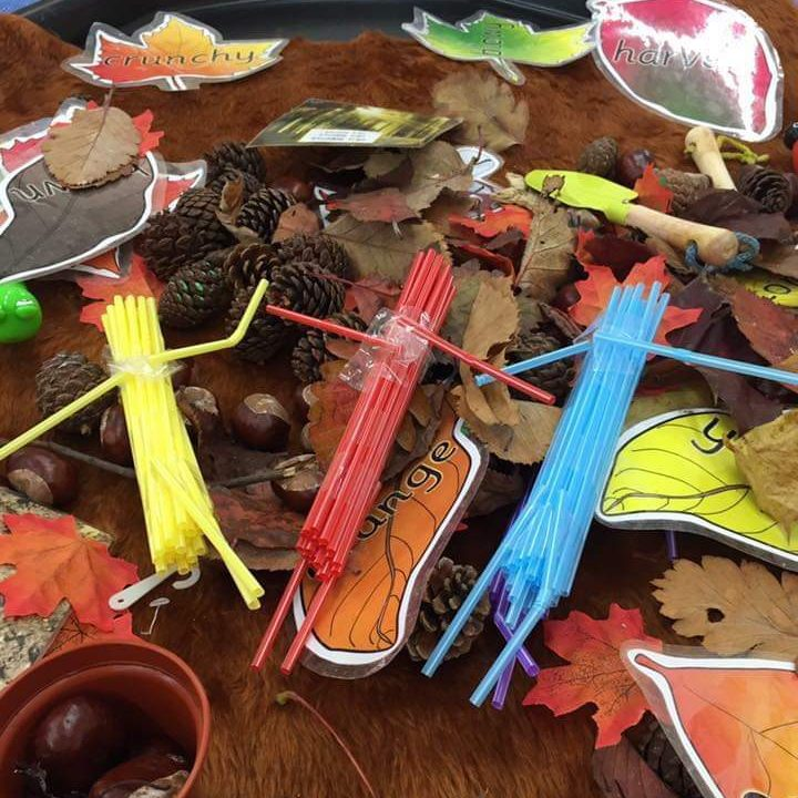 Messy Play Themes - Woodland